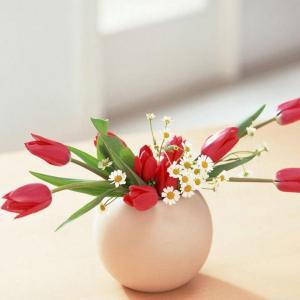 传统的中国式插花艺术