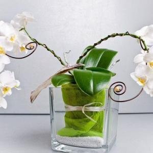 插花教学之:固定鲜花的几个小技巧