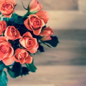 Fragrant flowers—Mito enjoy