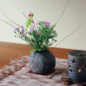 插花教学之:花材的生理特征该如何利用