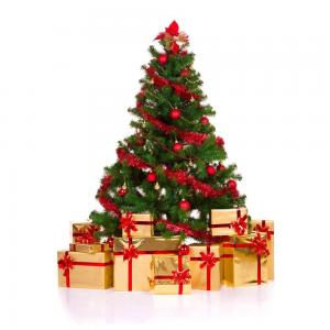 圣诞快乐! 聖誕快樂! shèng dàn kuài lè Merry Christmas. Feliz navidad!!!! Frohe Weihnachten! Buon Natale! Joyeux Noël. С рождеством! 메 리 크리스마스! クリスマスの楽しみ!
