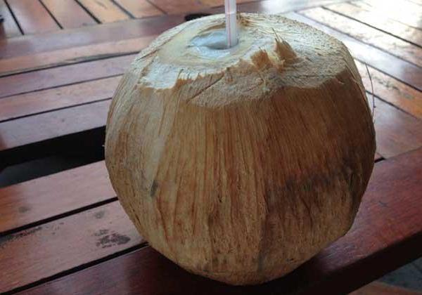 椰子汁的饮用方法与好处
