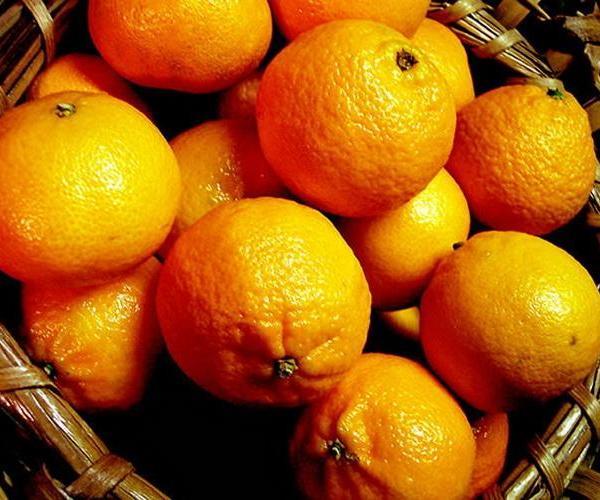 Árboles frutales: Mandarino