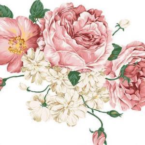 Flowers suitable for Scorpio1--Paeonia suffruticosa
