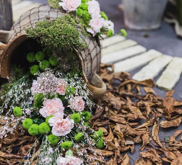 花卉植物的浇水要点