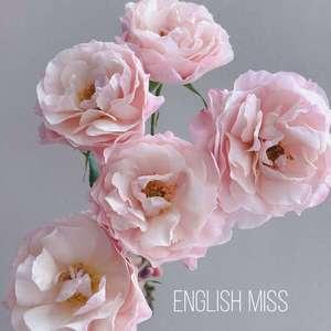 """我新添加了一棵""""月季-英国小姐""""到我的""""花园"""""""