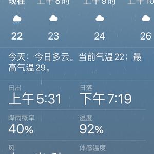 任由淋雨,出现几片烂叶,好在通风~昨天下午暴雨,一夜更是淅淅沥沥~小满后第十三天,早晨清凉雨停~预报今日多云,东风2米/秒,气温23到29度,湿度92%~不遮阳想遮雨,然而做不到,宝宝们善自珍重啦~