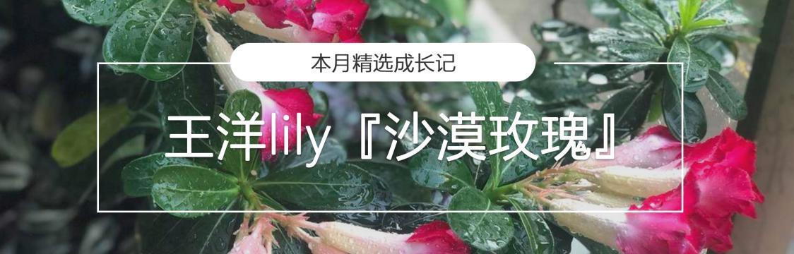 花主页 中文