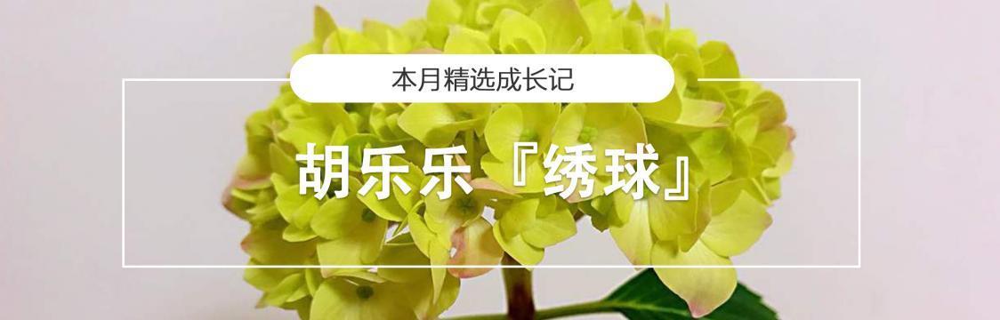 花主页中文