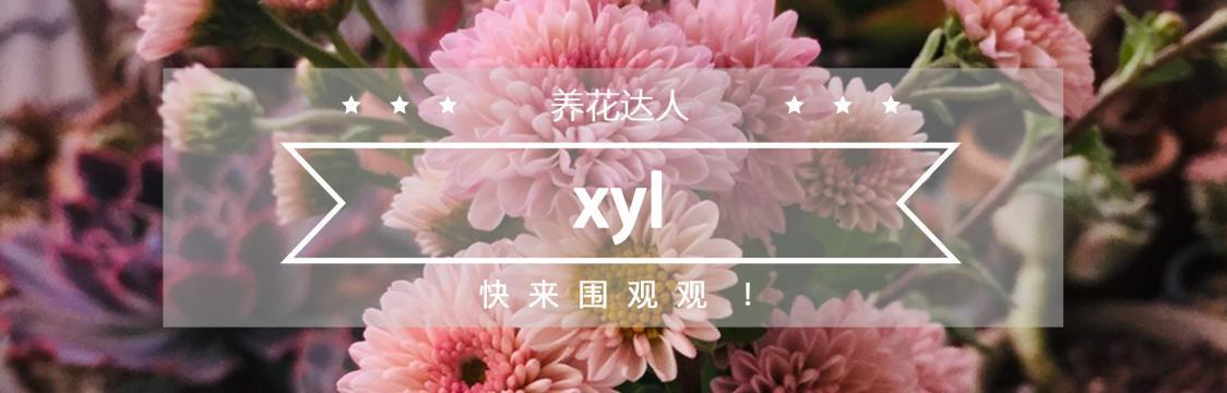 中文用户推荐